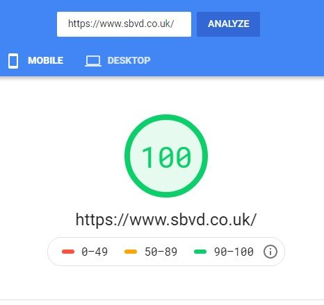 PageSpeed Insights 100 WordPress Theme SBVD